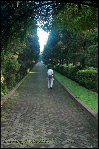 kintan_papa_17-11-2007-2.jpg