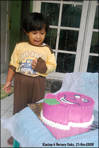 kintan-barney-cake_-21-dec-08